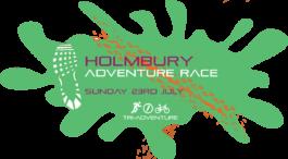holmbury-ar-2017